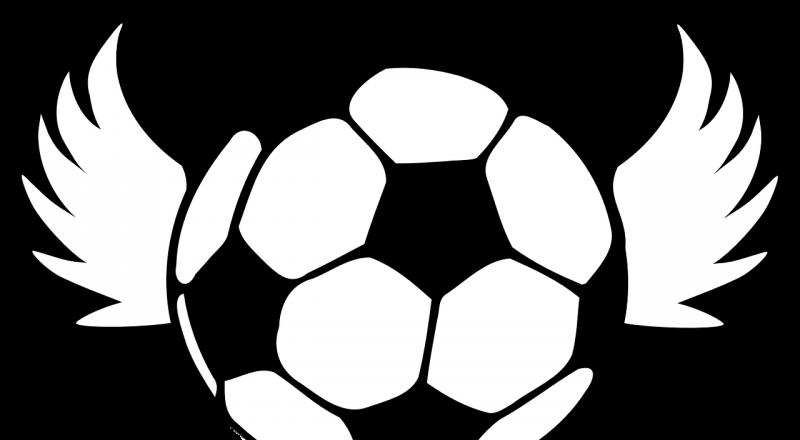 soccer, ball, wings